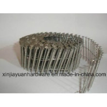 Concrete Stainless Steel Nails/Good Quality with Low Price Nails