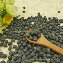 Granos negros grandes secos de primera calidad