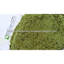 Moringa for good health