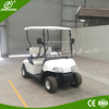 2 seater mini electric golf carts for community