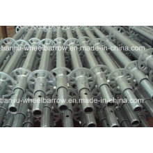Scaffolding on Sale for Construction Tj005