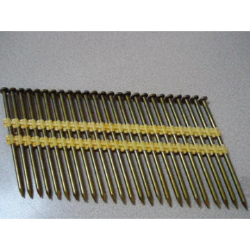 21 Degree Plastic Strip Nail