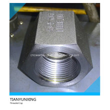A105n 3000lb Forged Carbon Steel Threaded/Thread Cap