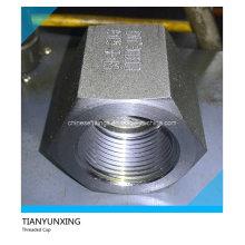 A105n 3000 литая кованая сталь с резьбой / резьбовая крышка