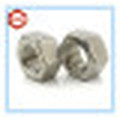 Ss304 DIN934 Hex Nut/ Stainless Steel Hex Nut