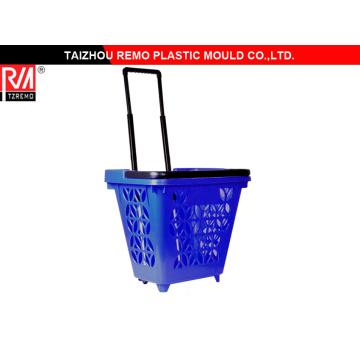 Molde de plástico Trolley alta calidad (RMMOULD7100255)