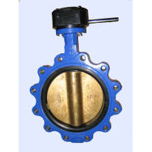 Lug Type Butterfly Valve (RX-BF-TJ04)