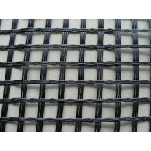 Hot Selling Geogrid (W-TGGS)