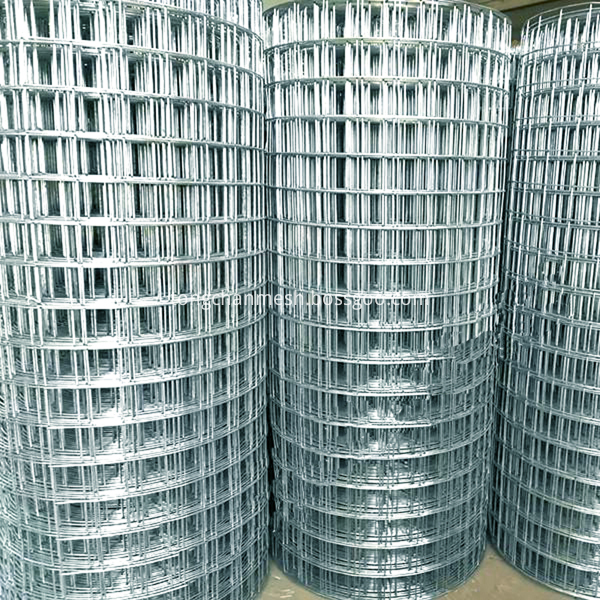 Stainless Steel Weld Wire Mesh Netting