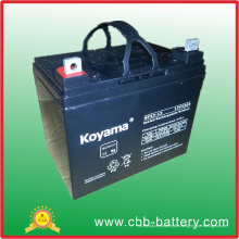 Bleisäure-AGM-Batterie 12V 33ah für elektrischen Rollstuhl