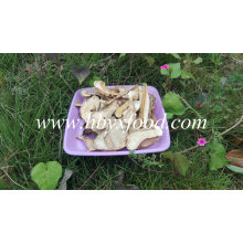 2016 Good Dried Boletus Edulis Price, Porcini Mushrooms for Sale