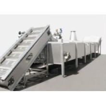 Continuous Pre-Boiling Machine Fruit And Vegetable Blacher
