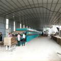 Equipamentos de secador de folheado de núcleo de madeira compensada
