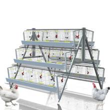 South Africa best sale galvanized layer chicken cage
