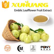 2015 Fructus phyllanthi/Agrimonia Pilosa Extract/Phyllanthus emblica extract