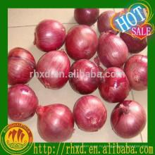 Китай свежий Красный лук, желтый лук импортер из Дубай Малайзия по низкой цене