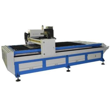 Raycus Fiber Laser Cutting Machine for Metal