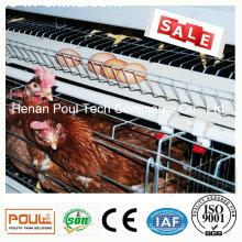 Poul Tech Птицеводческий фермерский слой Куриная клетка (горячее цинкование)