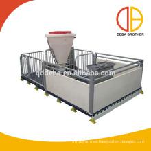 Mytest PVC Panel Destete Cajas Cerdo Nursery Crate