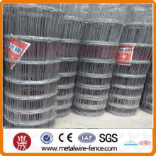 Alibaba China Wire diameter 1.8cm-2.5cm Galvanized Wire Mesh Grassland fence/kraal network/animal fence