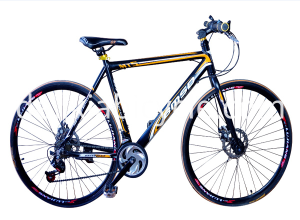 MTB mountain bicycle