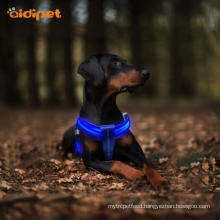 Reflective Rechargeable Led Dog Harness Size Adjustable