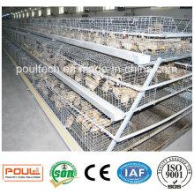 Best Price Good Service Pullet Chicken Cage