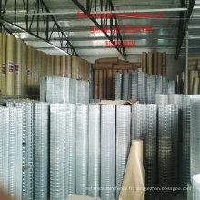 Q195 Q235 304 316 1/2 '' treillis métallique soudé électro-galvanisé