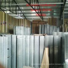 Q195 Q235 304 316 1/2′′ Electro Galvanized Welded Wire Mesh