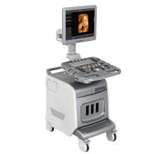 Ultrasound System: PT400 4D Color Doppler