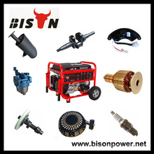 BISON China Zhejiang OEM con el fabricante Universal Generator Parts