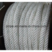 Atlas Rope / Nine Strength Atlas Rope