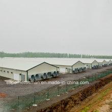 Leichter Stahlbau Geflügelfarm Bau mit allen Produktionsanlagen