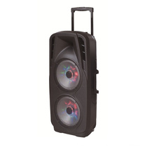 Doppelter 10-Zoll-Akku-Lautsprecher in Profi-Audio für DJ Stage F73D