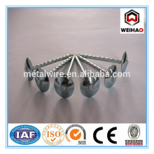 cheaper price roofing nails(suppliers in China)