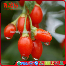 Good Quality goji berry Free Samples goji cheap goji berry price