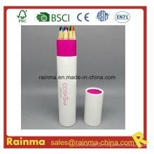 Hochwertiger Farbstift im Papierrohrhalter