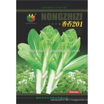 PK05 No.201 early maturity white pakchoi shum seeds, hybrid pakchoi seeds for planting