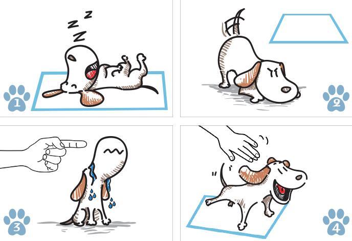 Pet Dog Diaper