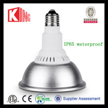 DC 12V Energy Saving R20 R30 Lamp Bulb