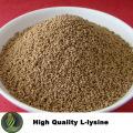 Futterzusatz L Lysinhydrochlorid 98,5%