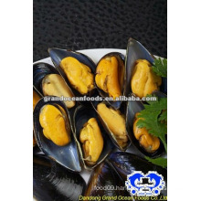 seafood frozen boiled mussel with shell