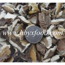 Massa, secado, cogumelo, shiitake, fatia