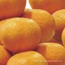 Mandarina con mejor calidad en 2013
