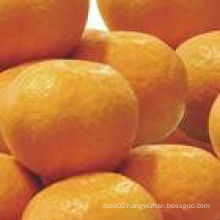 chinese sweet Mandarin orange for sale