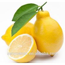 Лучший натуральный продукт 98% CAS 520-34-3 Диосметин