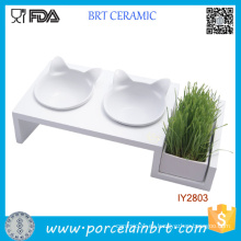 Doble Pet Bowl Cat Grass Pot Accesorios para mascotas al por mayor