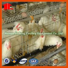 Jinfeng Chick Feeding Equipment