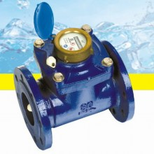 Flanged Horizontal Waltman Water Meter