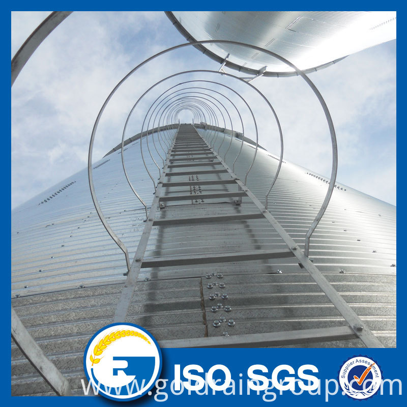 Silo Roof Ladder